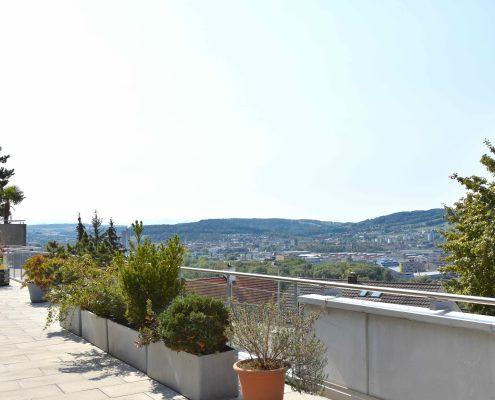 5.5-Zimmer-Terrassenwohnung-Oetwil-an-der-Limmat
